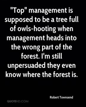 """""""Top"""" management is supposed to be a tree full of owls-hooting when management heads into the wrong part of the forest. I'm still unpersuaded they even know where the forest is."""
