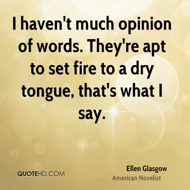 I haven't much opinion of words. They're apt to set fire to a dry tongue, that's what I say.
