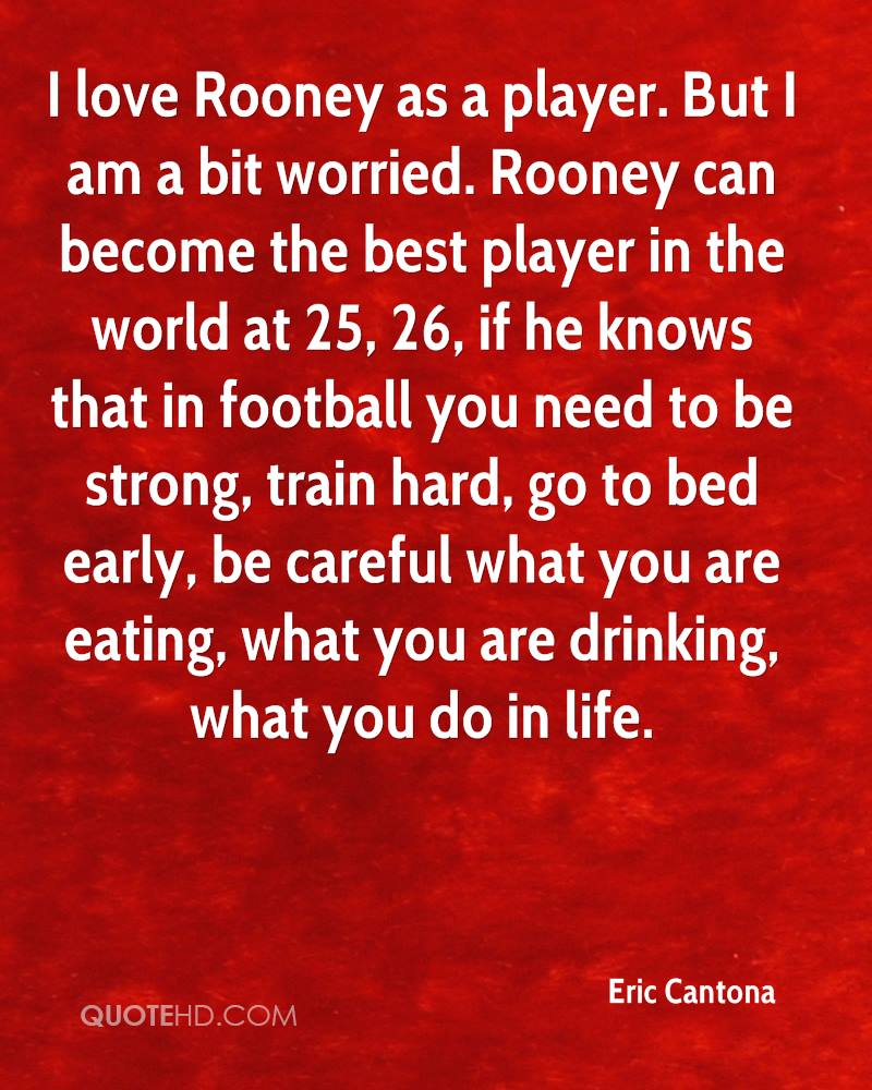 I Am Doing The Best I Can Quotes: Eric Cantona Quotes