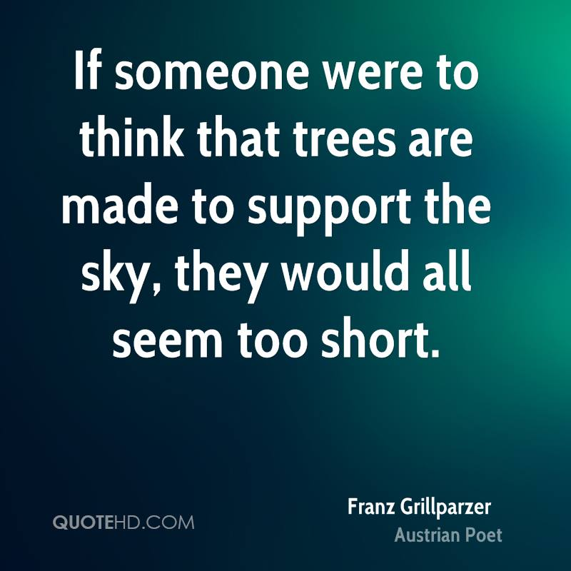 If someone were to think that trees are made to support the sky, they would all seem too short.