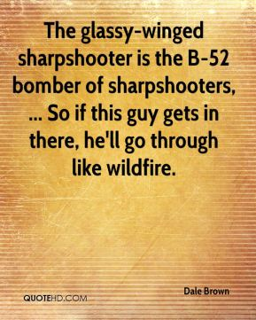 The glassy-winged sharpshooter is the B-52 bomber of sharpshooters, ... So if this guy gets in there, he'll go through like wildfire.