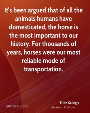 It's been argued that of all the animals humans have domesticated, the horse is the most important to our history. For thousands of years, horses were our most reliable mode of transportation.