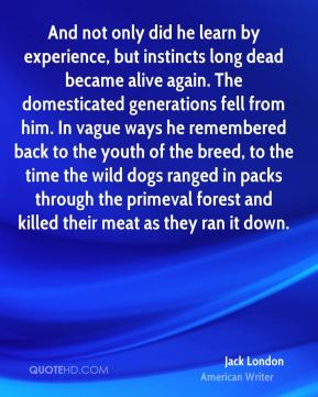 And not only did he learn by experience, but instincts long dead became alive again. The domesticated generations fell from him. In vague ways he remembered back to the youth of the breed, to the time the wild dogs ranged in packs through the primeval forest and killed their meat as they ran it down.