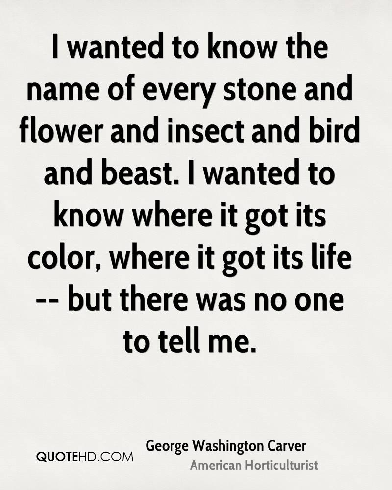 I wanted to know the name of every stone and flower and insect and bird and beast. I wanted to know where it got its color, where it got its life -- but there was no one to tell me.