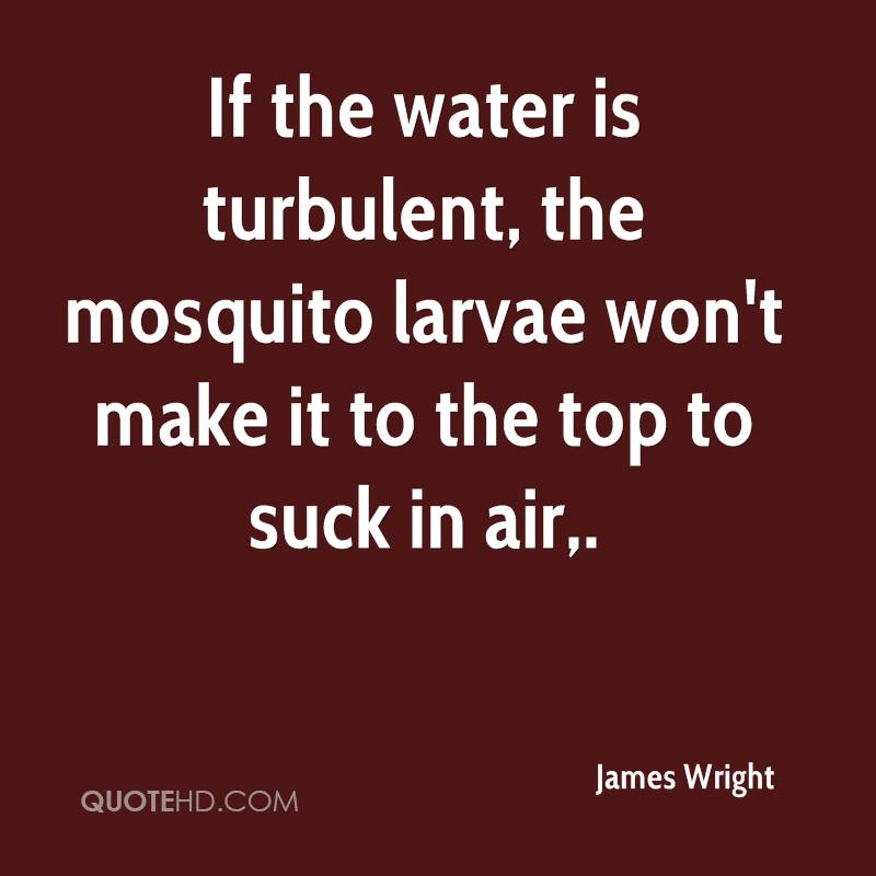 If the water is turbulent, the mosquito larvae won't make it to the top to suck in air.