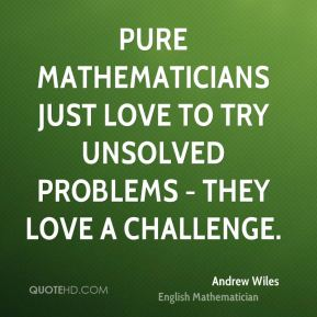 Pure mathematicians just love to try unsolved problems - they love a challenge.