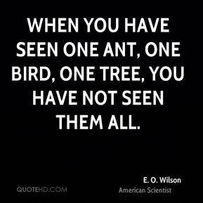 E. O. Wilson - When you have seen one ant, one bird, one tree, you have not seen them all.