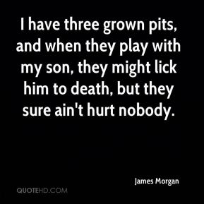 James Morgan - I have three grown pits, and when they play with my son, they might lick him to death, but they sure ain't hurt nobody.