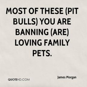 James Morgan - Most of these (pit bulls) you are banning (are) loving family pets.