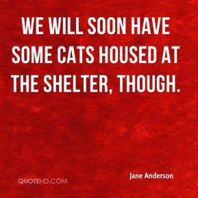 We will soon have some cats housed at the shelter, though.
