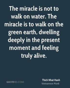 The miracle is not to walk on water. The miracle is to walk on the green earth, dwelling deeply in the present moment and feeling truly alive.