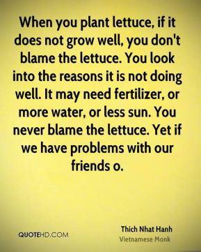 Thich Nhat Hanh  - When you plant lettuce, if it does not grow well, you don't blame the lettuce. You look into the reasons it is not doing well. It may need fertilizer, or more water, or less sun. You never blame the lettuce. Yet if we have problems with our friends o.