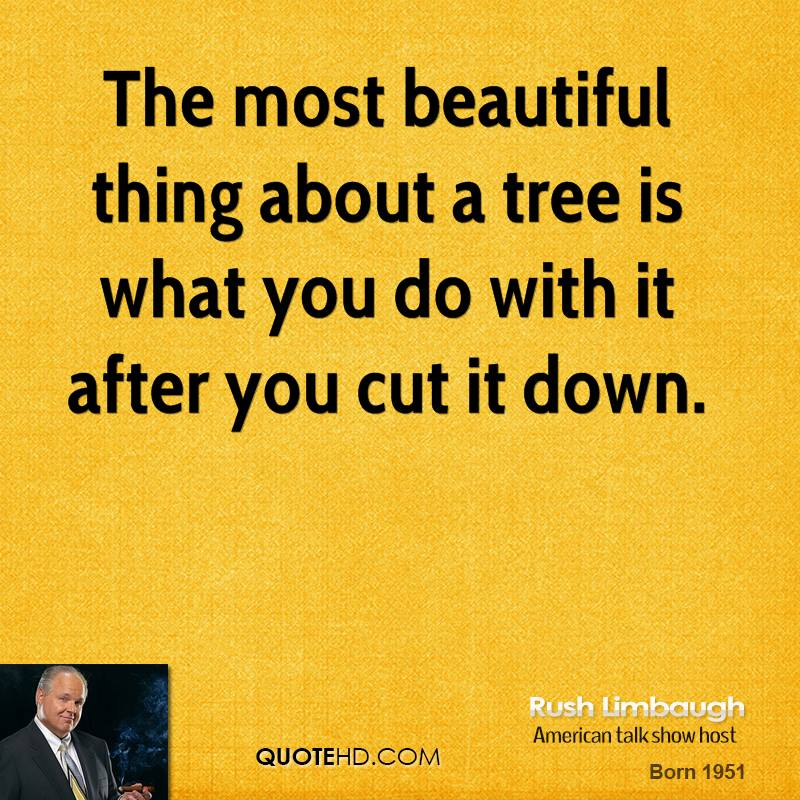 The most beautiful thing about a tree is what you do with it after you cut it down.