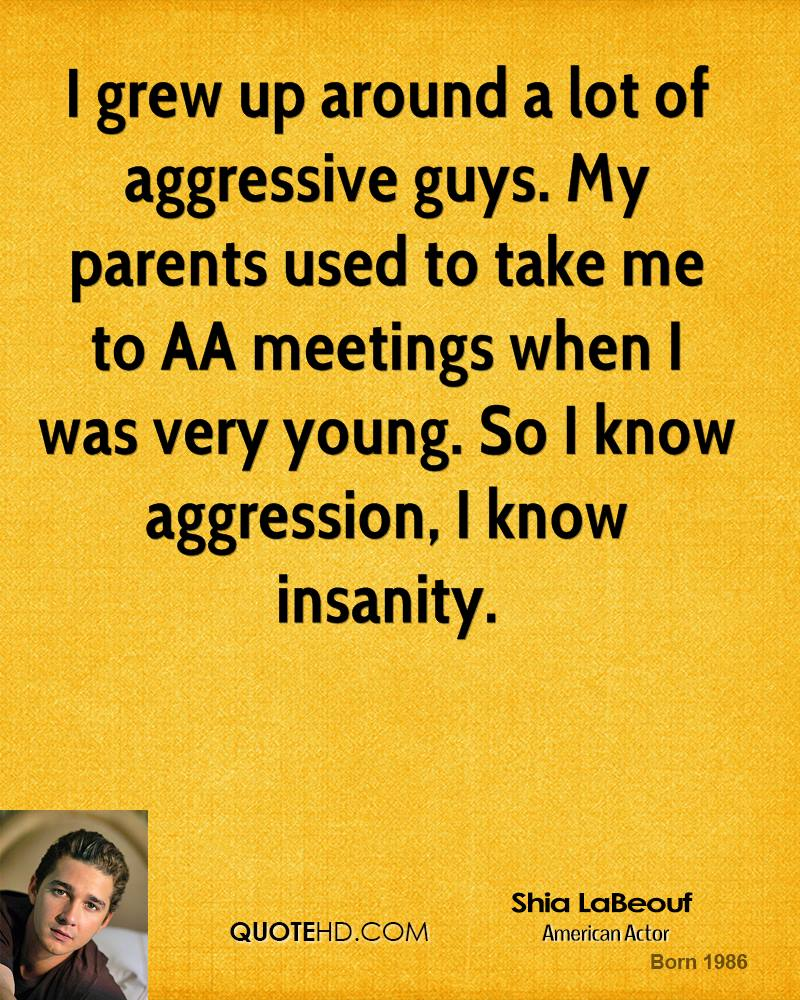 I grew up around a lot of aggressive guys. My parents used to take me to AA meetings when I was very young. So I know aggression, I know insanity.