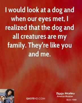 Ziggy Marley - I would look at a dog and when our eyes met, I realized that the dog and all creatures are my family. They're like you and me.