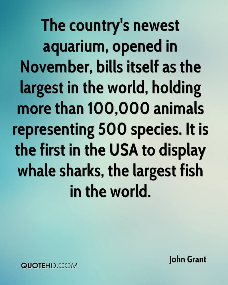 The country's newest aquarium, opened in November, bills itself as the largest in the world, holding more than 100,000 animals representing 500 species. It is the first in the USA to display whale sharks, the largest fish in the world.
