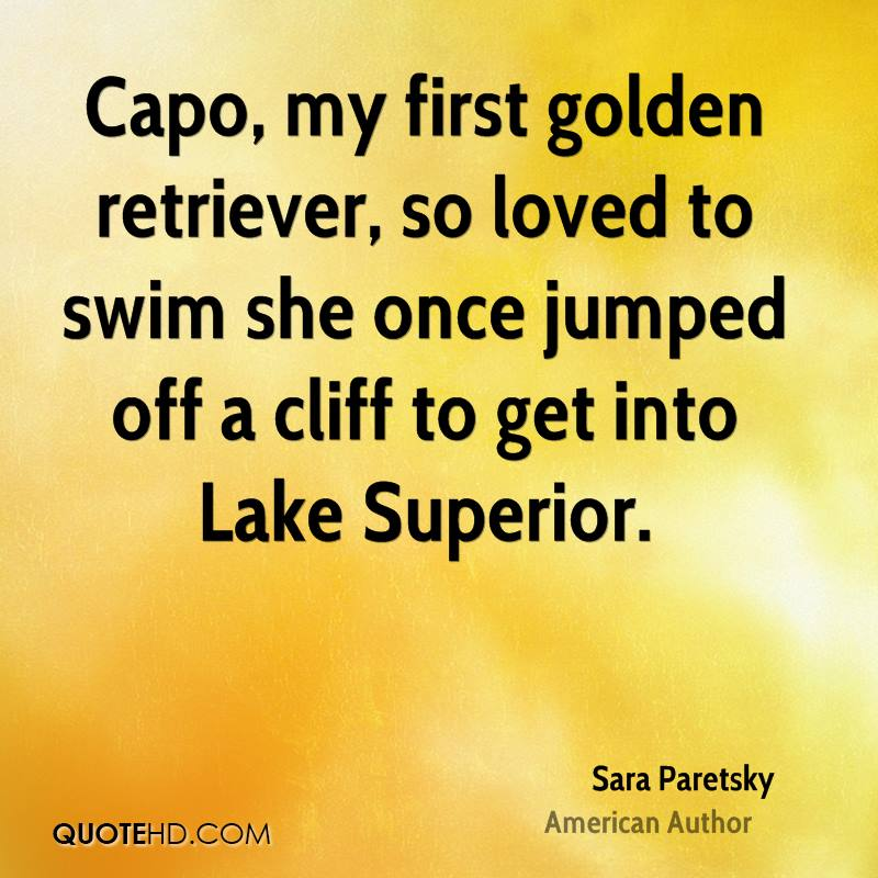 Capo, my first golden retriever, so loved to swim she once jumped off a cliff to get into Lake Superior.