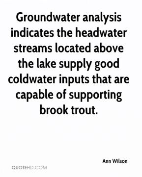 Groundwater analysis indicates the headwater streams located above the lake supply good coldwater inputs that are capable of supporting brook trout.