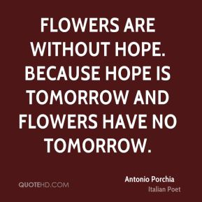 Flowers are without hope. Because hope is tomorrow and flowers have no tomorrow.