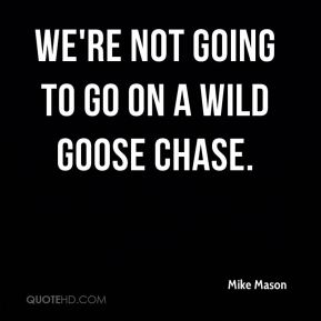 We're not going to go on a wild goose chase.
