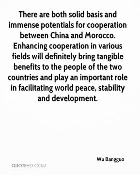 There are both solid basis and immense potentials for cooperation between China and Morocco. Enhancing cooperation in various fields will definitely bring tangible benefits to the people of the two countries and play an important role in facilitating world peace, stability and development.