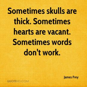 James Frey - Sometimes skulls are thick. Sometimes hearts are vacant. Sometimes words don't work.