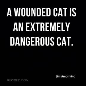 A wounded cat is an extremely dangerous cat.