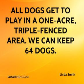 All dogs get to play in a one-acre, triple-fenced area. We can keep 64 dogs.