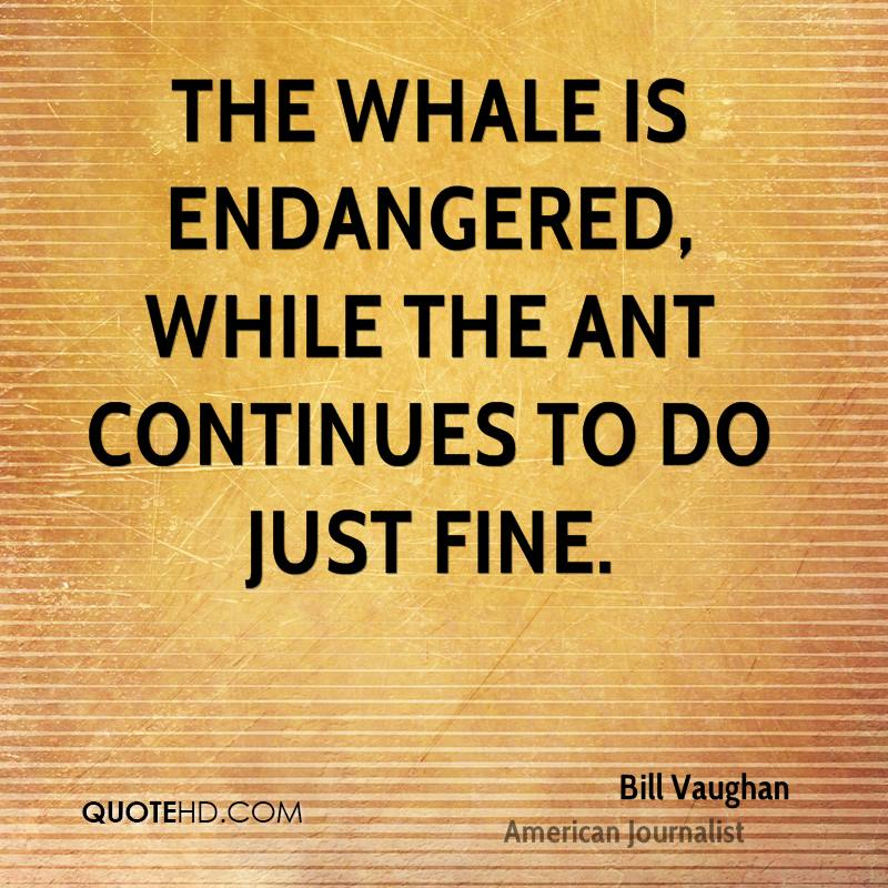 The whale is endangered, while the ant continues to do just fine.