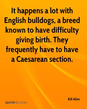 Bill Allen - It happens a lot with English bulldogs, a breed known to have difficulty giving birth. They frequently have to have a Caesarean section.