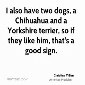 I also have two dogs, a Chihuahua and a Yorkshire terrier, so if they like him, that's a good sign.