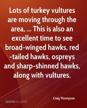 Craig Thompson - Lots of turkey vultures are moving through the area, ... This is also an excellent time to see broad-winged hawks, red-tailed hawks, ospreys and sharp-shinned hawks, along with vultures.