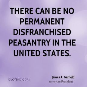 There can be no permanent disfranchised peasantry in the United States.