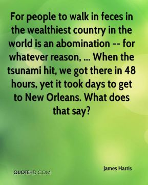 James Harris - For people to walk in feces in the wealthiest country in the world is an abomination -- for whatever reason, ... When the tsunami hit, we got there in 48 hours, yet it took days to get to New Orleans. What does that say?