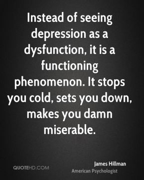 Instead of seeing depression as a dysfunction, it is a functioning phenomenon. It stops you cold, sets you down, makes you damn miserable.