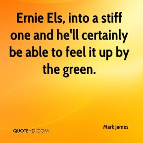 Ernie Els, into a stiff one and he'll certainly be able to feel it up by the green.