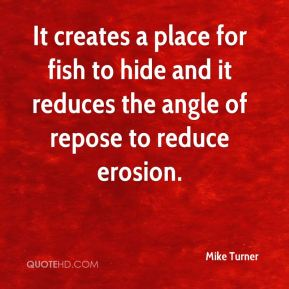 It creates a place for fish to hide and it reduces the angle of repose to reduce erosion.