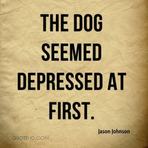 The dog seemed depressed at first.