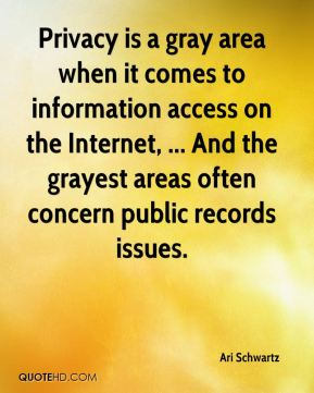 Privacy is a gray area when it comes to information access on the Internet, ... And the grayest areas often concern public records issues.