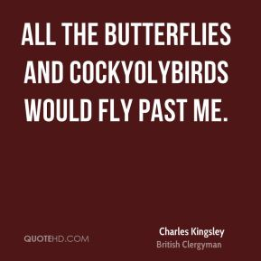 All the butterflies and cockyolybirds would fly past me.