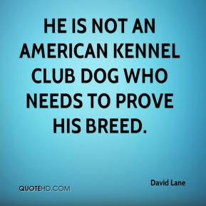 David Lane - He is not an American Kennel Club dog who needs to prove his breed.