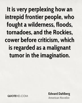 It is very perplexing how an intrepid frontier people, who fought a wilderness, floods, tornadoes, and the Rockies, cower before criticism, which is regarded as a malignant tumor in the imagination.