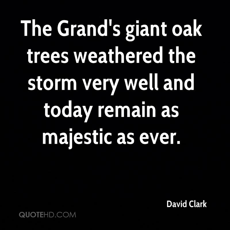 The Grand's giant oak trees weathered the storm very well and today remain as majestic as ever.