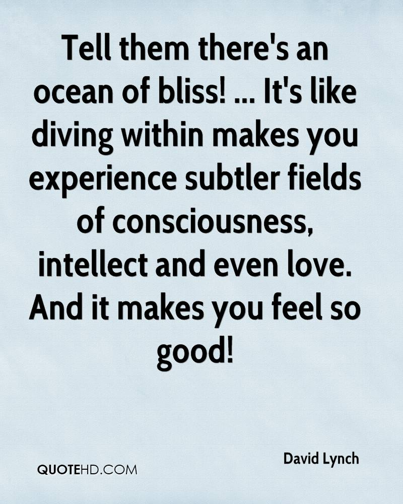 Tell them there's an ocean of bliss! ... It's like diving within makes you experience subtler fields of consciousness, intellect and even love. And it makes you feel so good!