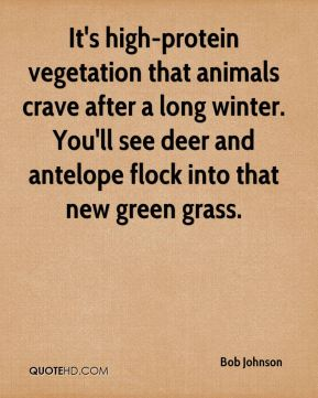 Bob Johnson - It's high-protein vegetation that animals crave after a long winter. You'll see deer and antelope flock into that new green grass.