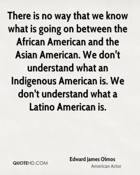 There is no way that we know what is going on between the African American and the Asian American. We don't understand what an Indigenous American is. We don't understand what a Latino American is.
