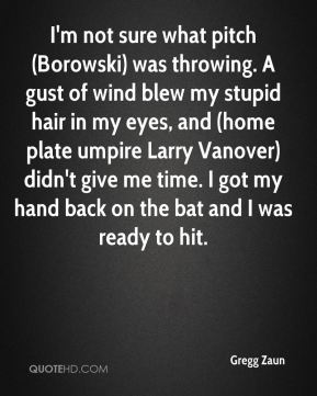 Gregg Zaun - I'm not sure what pitch (Borowski) was throwing. A gust of wind blew my stupid hair in my eyes, and (home plate umpire Larry Vanover) didn't give me time. I got my hand back on the bat and I was ready to hit.