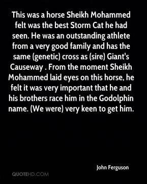 This was a horse Sheikh Mohammed felt was the best Storm Cat he had seen. He was an outstanding athlete from a very good family and has the same (genetic) cross as (sire) Giant's Causeway . From the moment Sheikh Mohammed laid eyes on this horse, he felt it was very important that he and his brothers race him in the Godolphin name. (We were) very keen to get him.