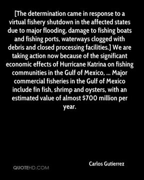 Carlos Gutierrez - [The determination came in response to a virtual fishery shutdown in the affected states due to major flooding, damage to fishing boats and fishing ports, waterways clogged with debris and closed processing facilities.] We are taking action now because of the significant economic effects of Hurricane Katrina on fishing communities in the Gulf of Mexico, ... Major commercial fisheries in the Gulf of Mexico include fin fish, shrimp and oysters, with an estimated value of almost $700 million per year.