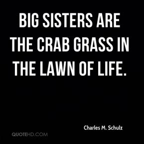 Charles M. Schulz - Big sisters are the crab grass in the lawn of life.